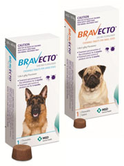 Bravecto Chewable Tablet