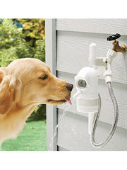 Contech+WaterDog+Automatic+Outdoor+Pet+Drinking+Fountain