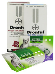 Drontal Allwormer for Cats