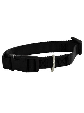 Guardian Gear Basic Nylon Dog Collar