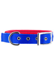 Kakadu Pet Orbit Two Toned Padded Collar
