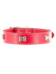 Kakadu Pet Give a Dog a Bone Decorative Leather Collar