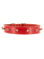 Kakadu Pet Studly Studded Leather Collar