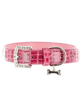 Kakadu Pet Park Avenue Collar