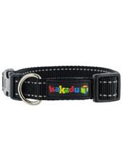 Kakadu Pet Empire Tracks Collar
