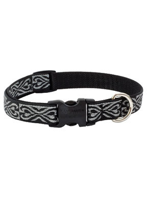 Lupine Silverado Dog Collar