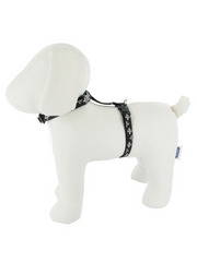 Lupine Silver Charm H-Style Harness