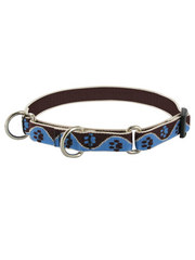 Lupine Muddy Paws Combo Collar