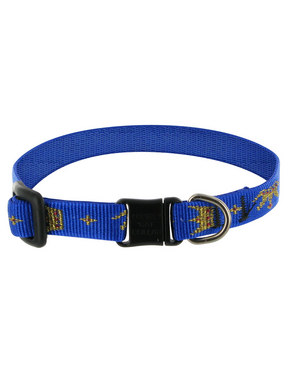 Lupine Noble Beast Breakaway Cat Collar