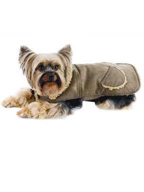 New York Dog Corduroy Coat