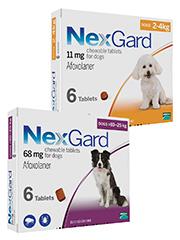 NexGard (afoxolaner) Chewables