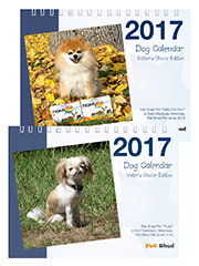 2017 Pet Shed Dog Calendar