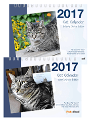 2017 Pet Shed Cat Calendar