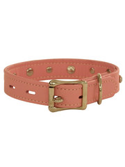 PJ Fox Topgrain Leather Collar with Diamonds