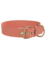 PJ Fox Big Dog Leather Collar