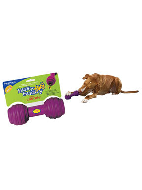 Premier Pet Busy Buddy Chuckle Treat Dispensing Toy