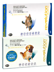 Revolution Flea Control & Heartworm Preventative