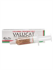 Valucat Wormer Paste for Cats